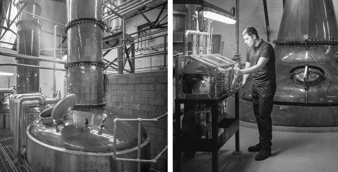 loch-lomond-distillery-stills